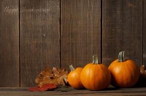thanksgiving-kieu-viet-va-toi
